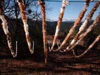 Rabbit Skin Ropes