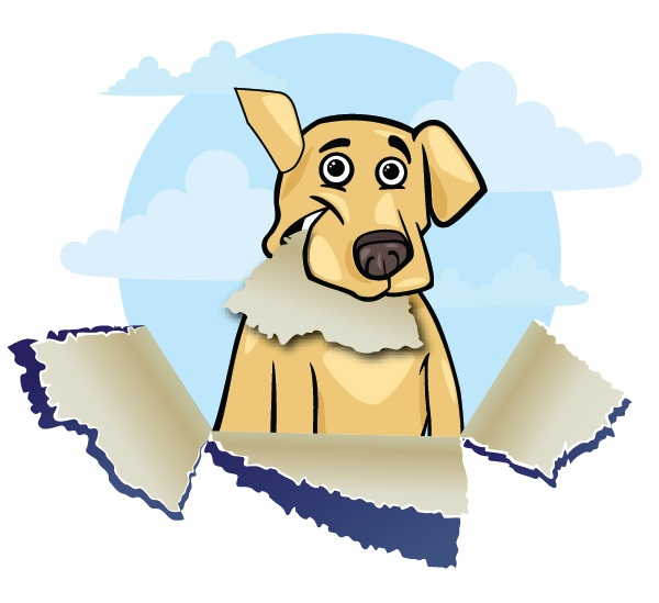 enjoy-your-dog-training-downers-grove-il