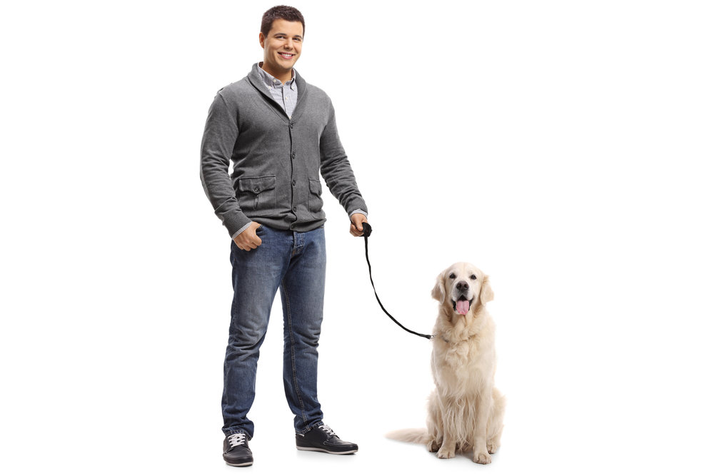 Loose Leash Walking -