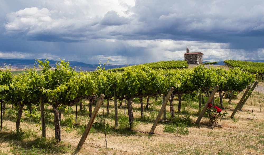 The Vineyards - We source from Eastern Washington's acclaimed Red Willow and Boushey Vineyards