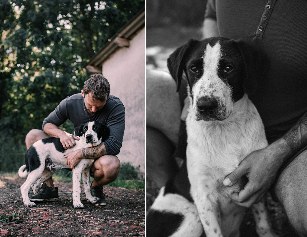 kutyas-fotozas-szeged-2017-8.jpg