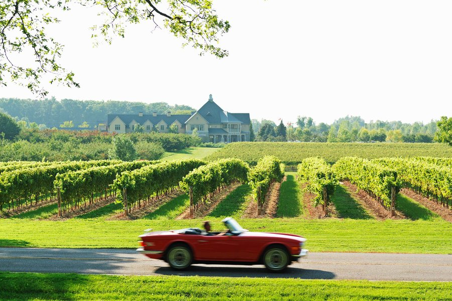 niagara-on-the-lake-wine-vineyards-canada-NIAGARAWINE0718.jpg