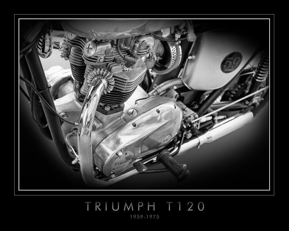 Triumph T120 (3).jpg