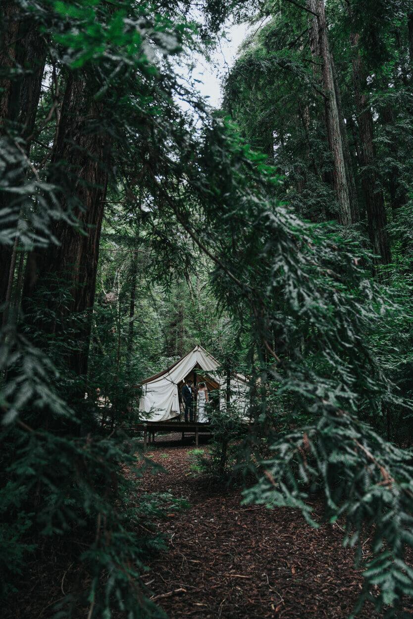 mariés sous une tente dans la forêt