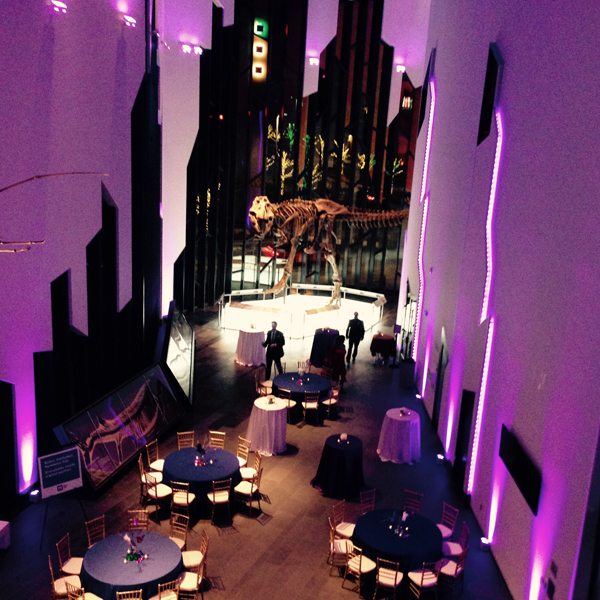 1 venue great hall.jpg