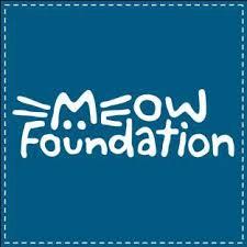 MeowFoundation.jpeg