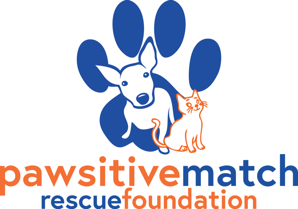 pawsitive_match_logo.png
