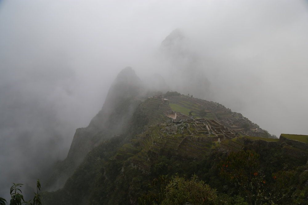 Machu Picchu rising from the fog at the end of the Salkantay Trek.