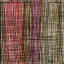 "2003  ""St.Louis""  Frode Gjerstad trio FMR rec"