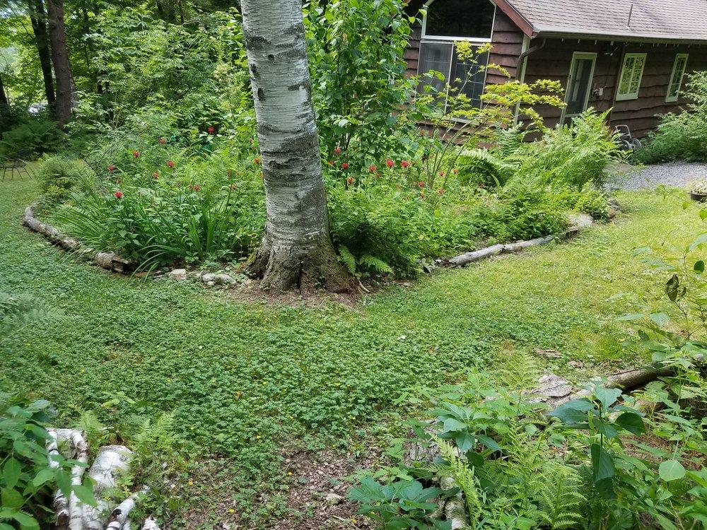 Woodland Garden, Stockbridge, MA.jpg