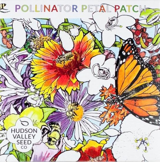 pollinator_petal_patch_mix_flower_seeds.jpg