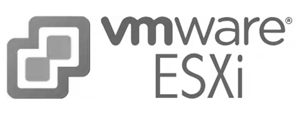 VMWare ESXi.png