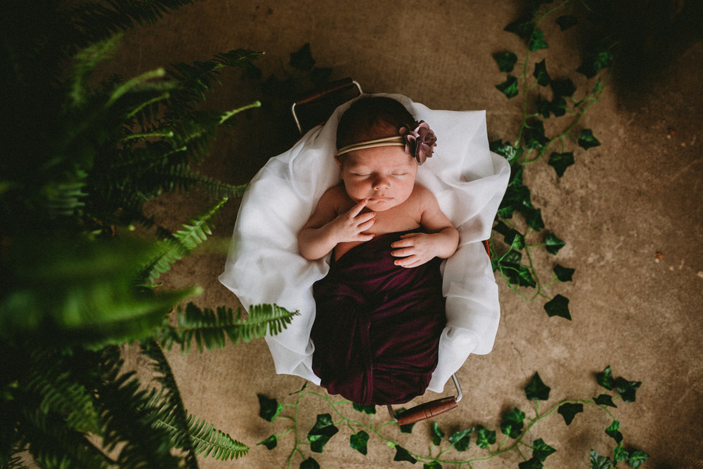 River   newborn session