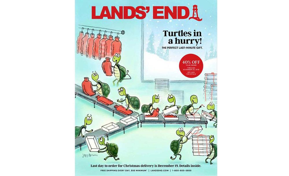 Turtle coverart