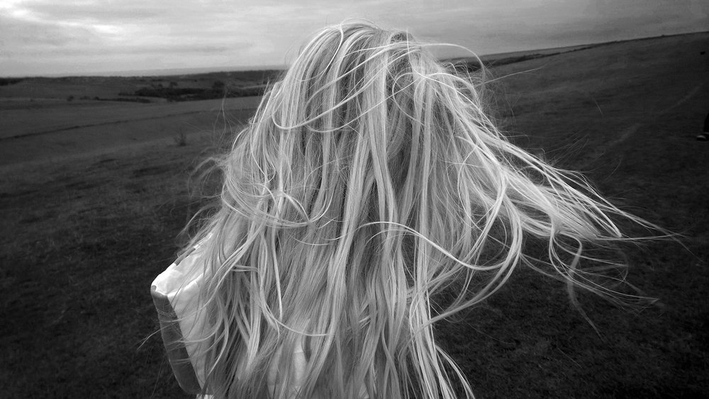 A windy day on the South Downs, UK © Tanya Clarke 2014