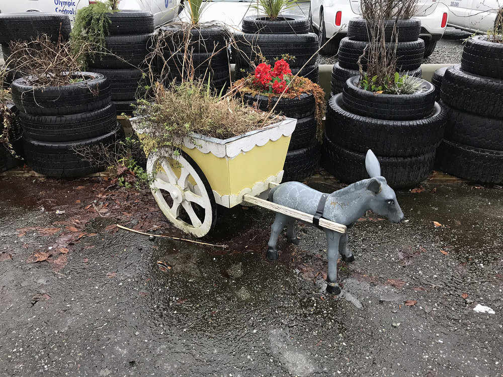 Donkey and cart plant container, North Vancouver 2019 © Tanya Clarke