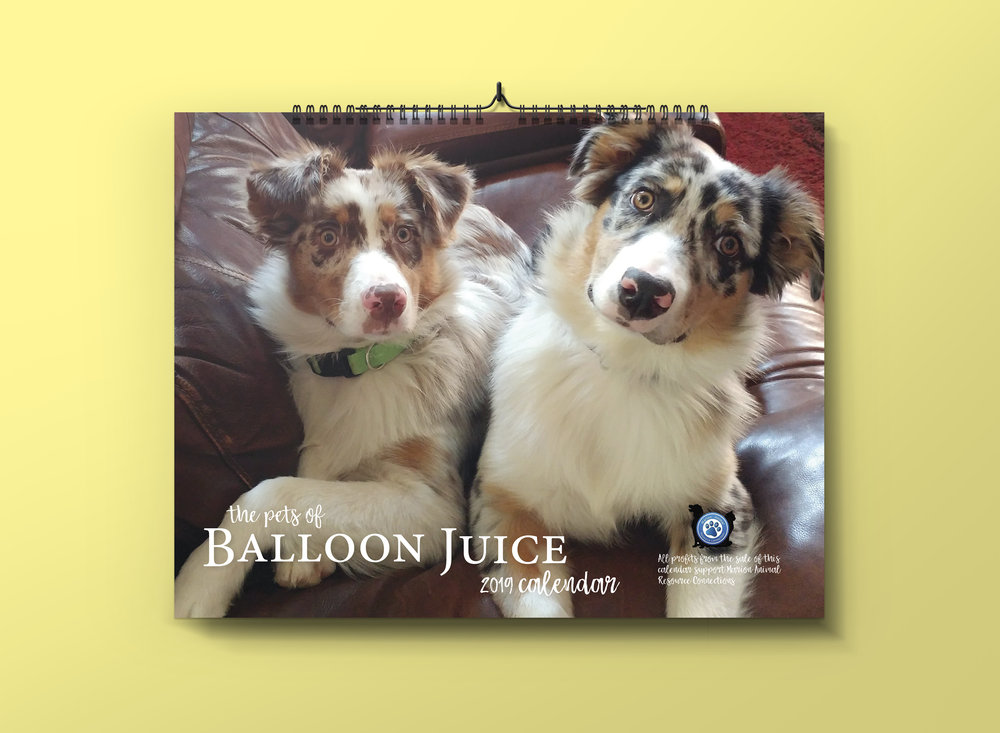 Balloon-Juice.com  has sold a calendar of reader-submitted photos each year since 2010 to raise funds for a rural, no kill shelter. I have volunteered to produce the calendar since 2011.