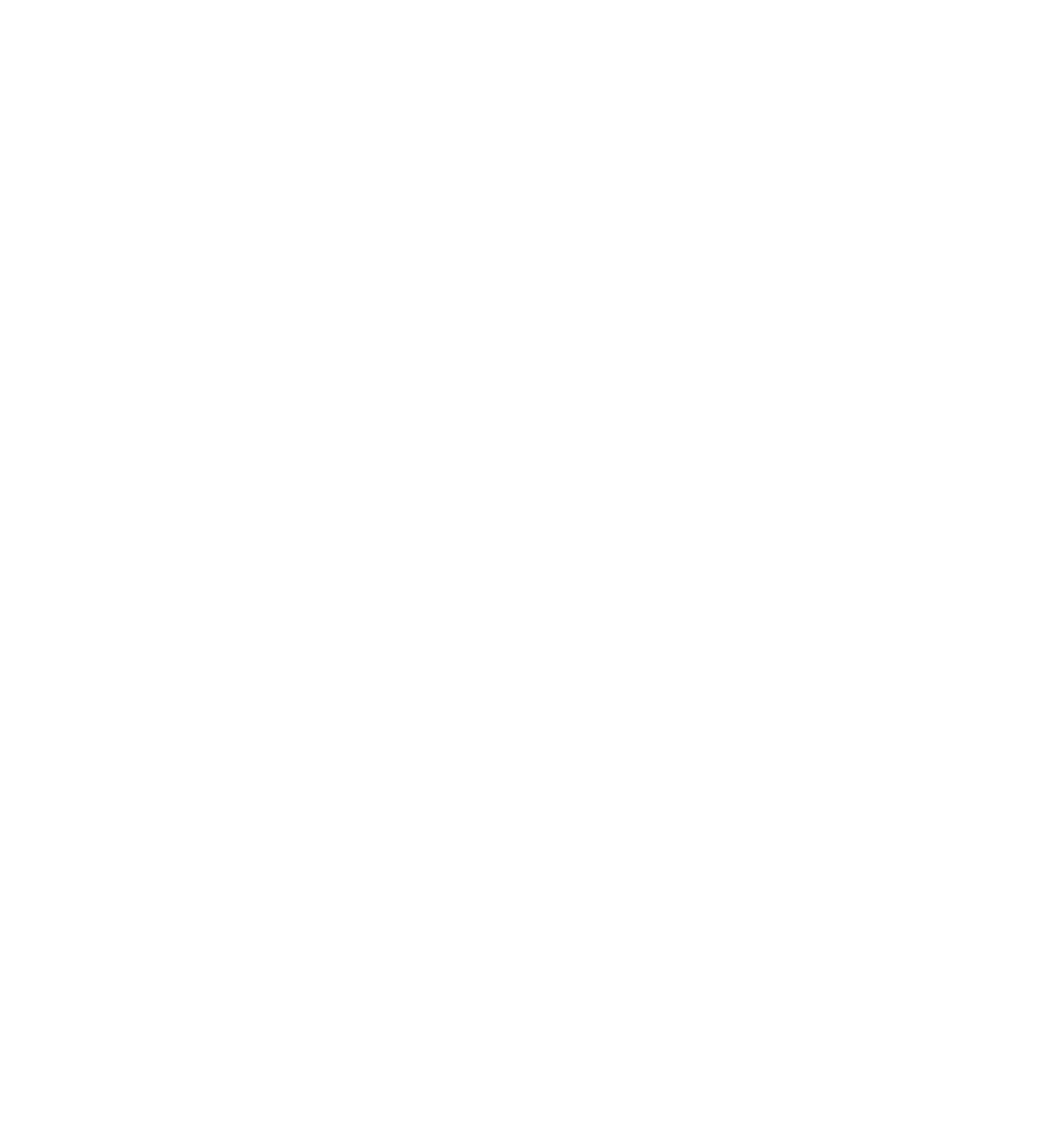 Training Camps — Pine Ranch Dog Training & Boarding