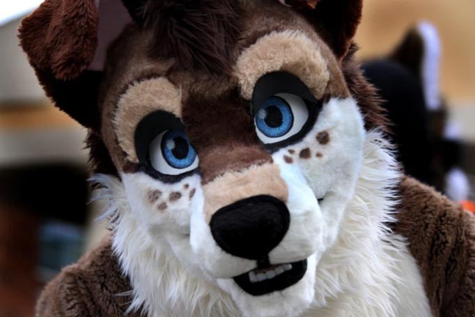 Furries?