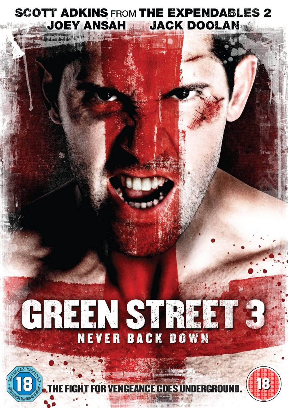 GS3-DVD.jpg