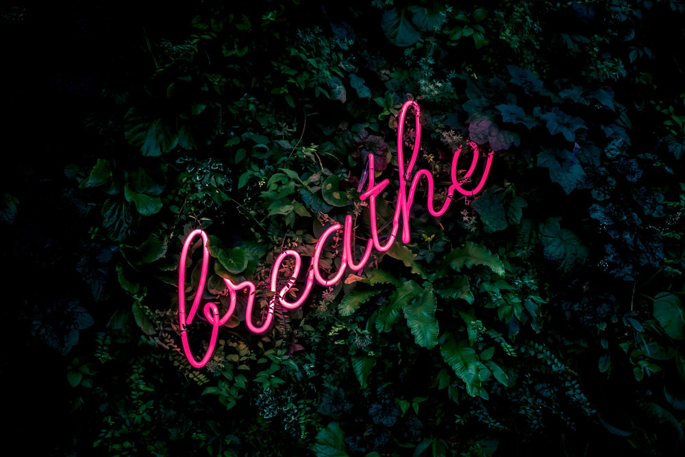 Take a breath… - Breathing is quite literally the foundation of a yoga practise, I will get you to use your breath as a tool, to help guide your body through the postures.