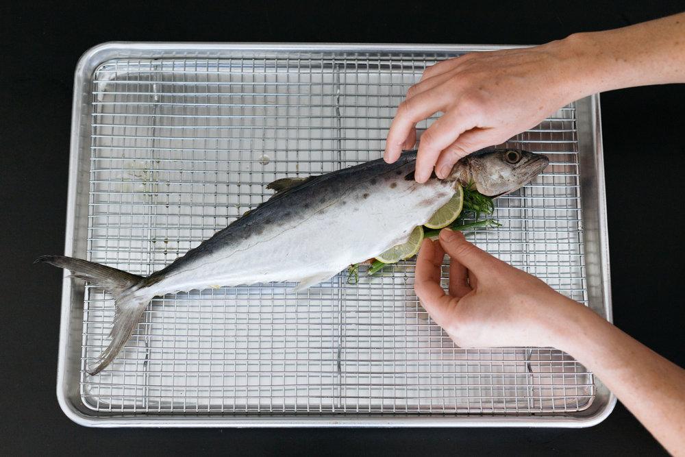 mackerel for instagram.JPG