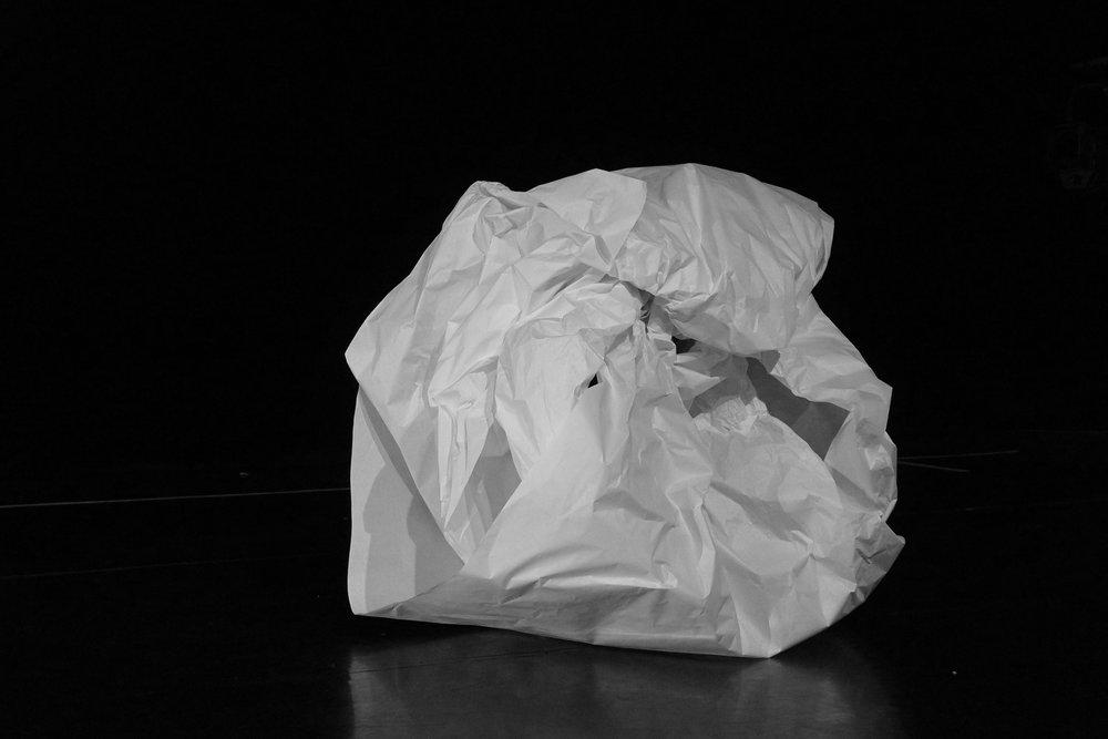 Papier 3, 2017, Papier, kraft blanc 2x1m.
