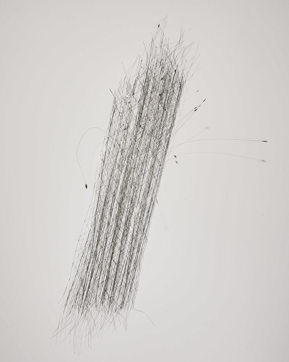 Gerbe 3   2008, fils de maillechort, soudure, peinture  40x60cm