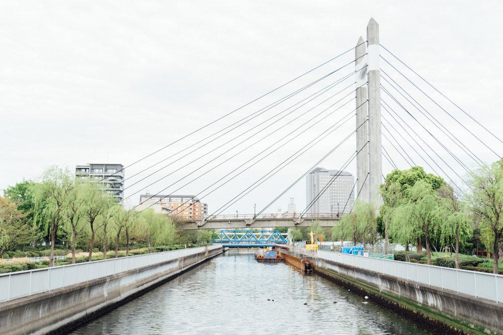 木場公園大橋
