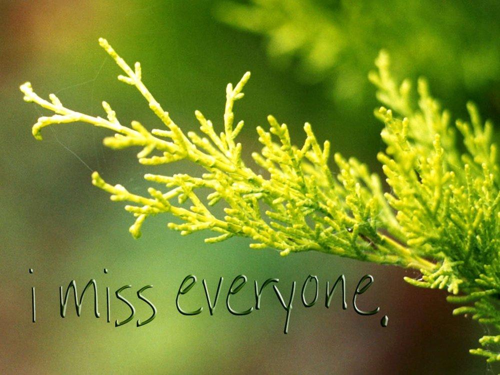 I-miss-everyone-nikki-reimer.jpg