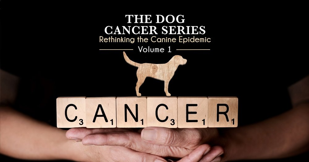 dog-cancer.jpg