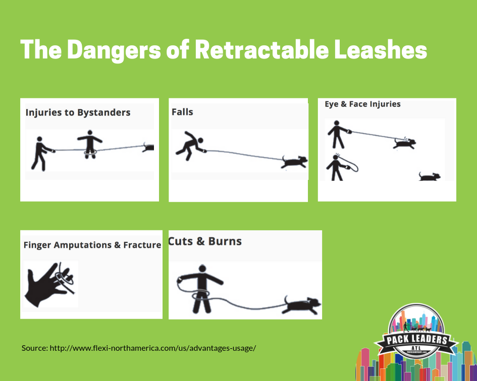atlanta-dog-walkers-pet-sitting-blog-dangers-of-retractable-leashes-graphic
