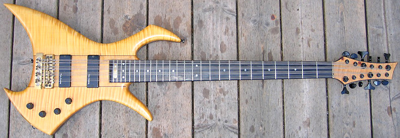 Matthias Haydn Custom 12-String Bass