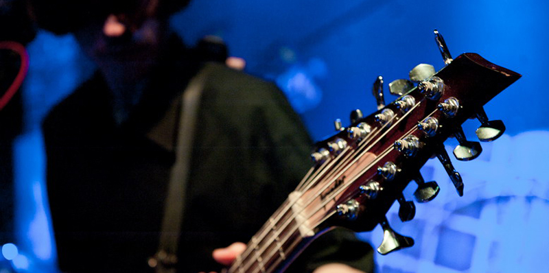 Grinder 12-String Bass