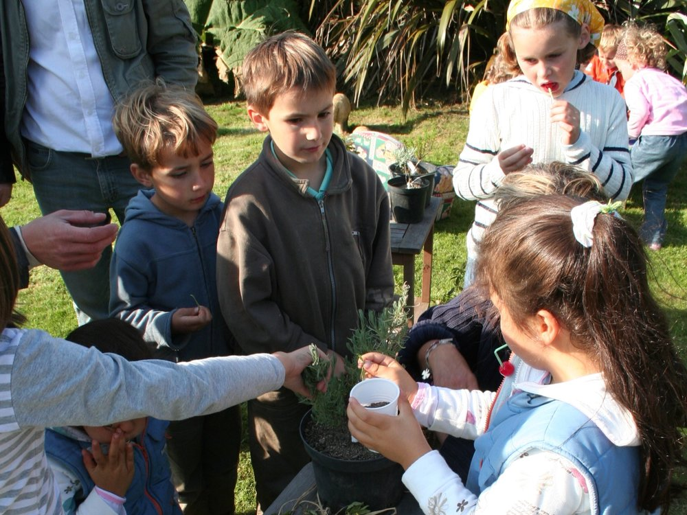 Ateliers pour enfants - Pour les groupes, sur réservation. Visite guidée du jardin et de la ferme puis atelier autour de la géographie, des senteurs et du dessin. N'hésitez pas à nous appeler pour organiser votre sortie. N'oubliez pas la réserve naturelle la Mare de Vauville ainsi que les landes sauvages.