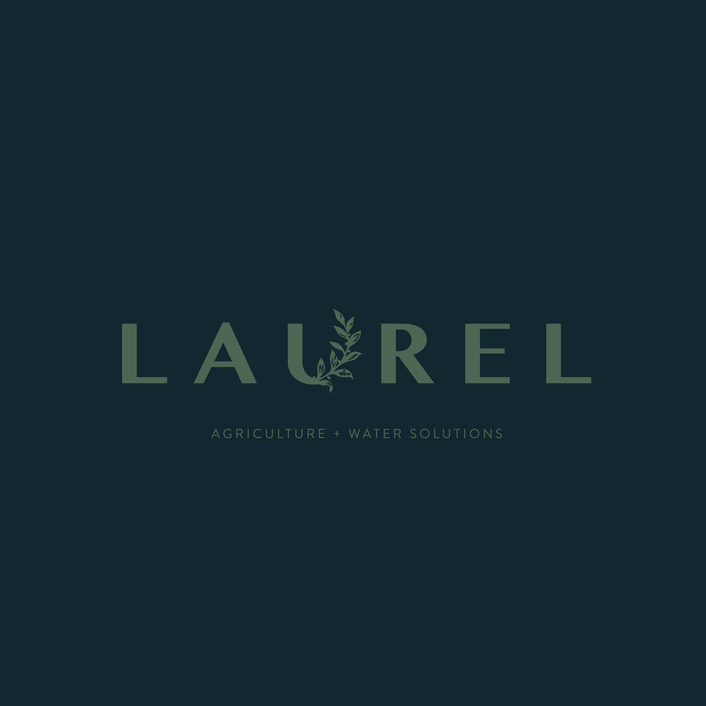 Laurel-Promotion_square17.jpg