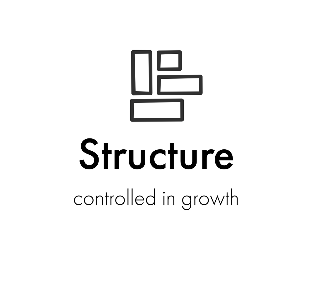 structure.png