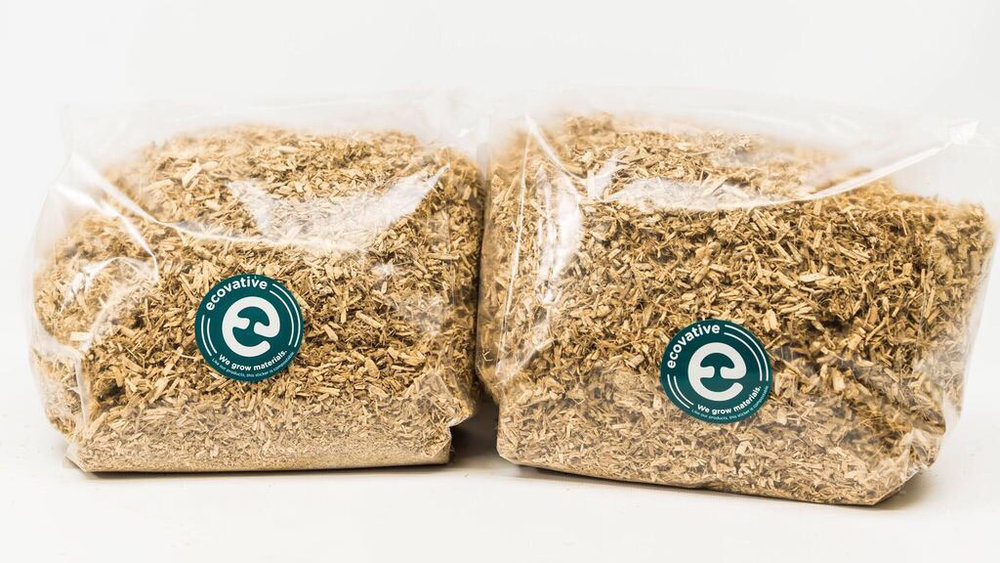 Grow.bio - Visit our community site to purchase GIY bags for the Mycelium Design Contest.