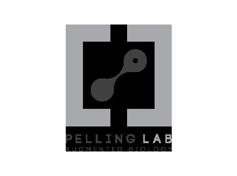 PellingLab.png