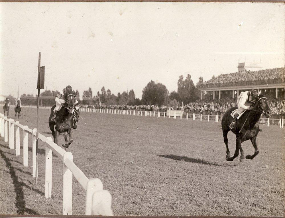 Federico Regoli Gran Premio Di Milano 1929.jpg