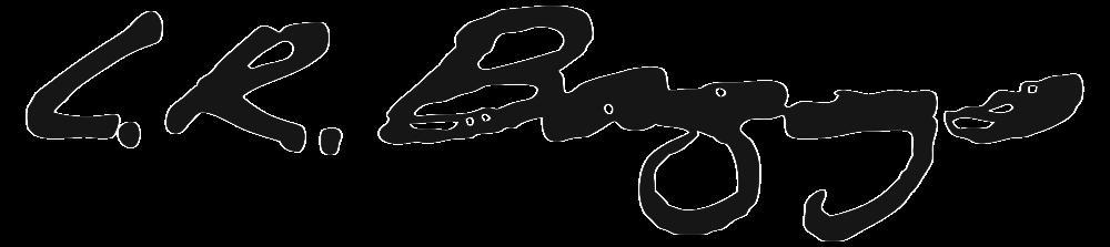 lr-baggs-logo-high-res-print.png