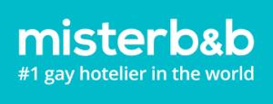 misterbnb-300x115.png