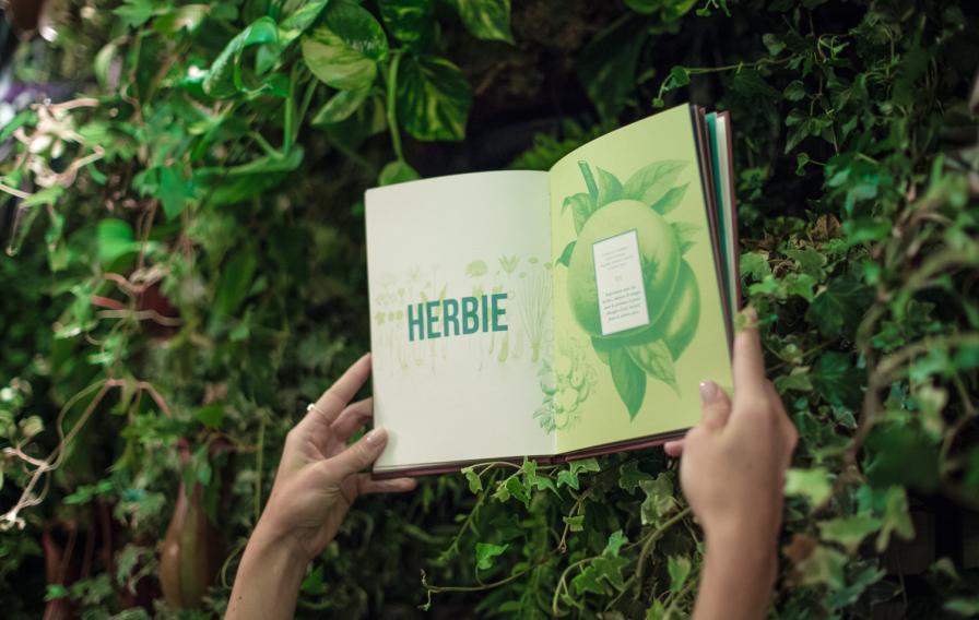 tendance-herbier-lieux-barbotaniste3.jpg