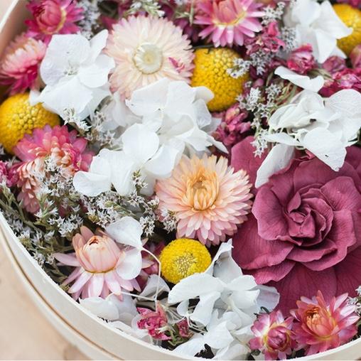trouver-fleurs-sc3a9chc3a9es-bergamotte-2.jpg