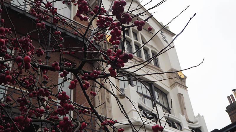 cityguide-anvers-kc-archi-culture-84.jpg