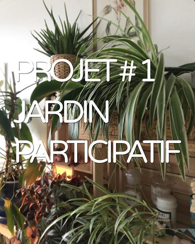 Projet # 1 Les Jardins Participatifs  #lesamisdelacolline