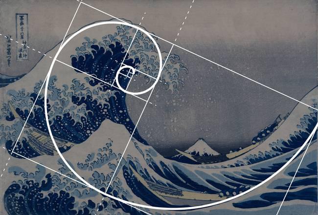 Spiral Wave Fibonacci