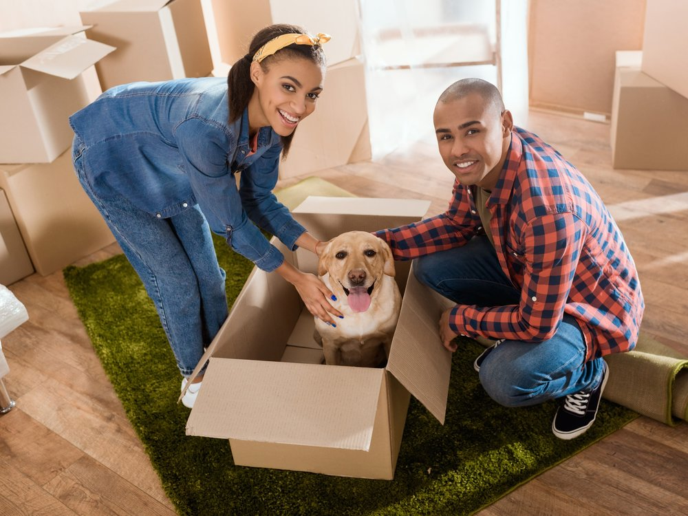 "Even if you're ""just"" renting, you can keep your belongings safe with renter's insurance."