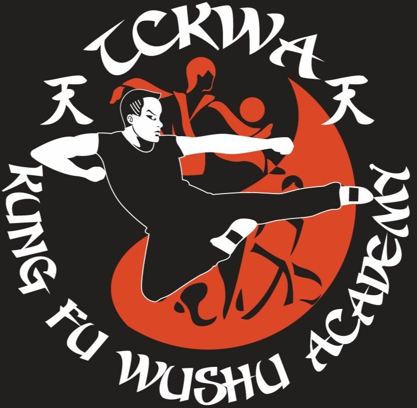 The Chinese Kung Fu Wushu Academy