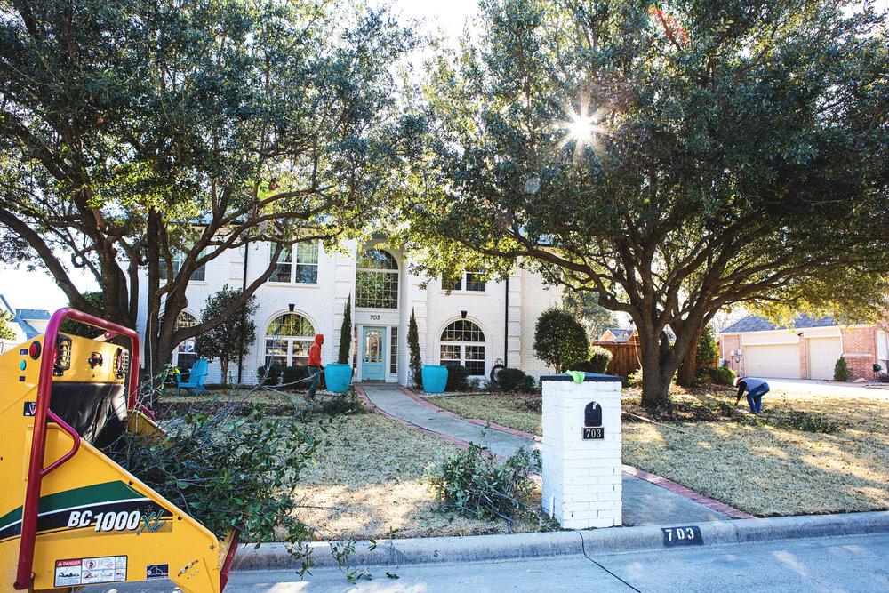 Tree Trimming in Southlake Texas (15 of 23).jpg